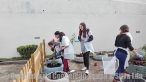 Quintinha da conceicao- jardim sensorial-2