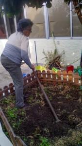quintinha da conceicao jardinagem-3